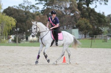 NEW THREE PHASE EQUITATION (3PE) RULES